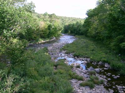 westfieldriver2.jpg