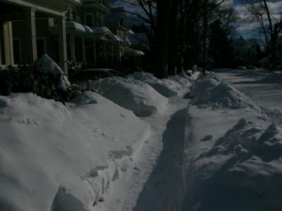 snowpiles1.jpg