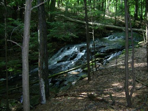 streamfall