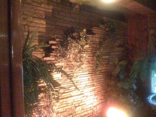 jungleroom2