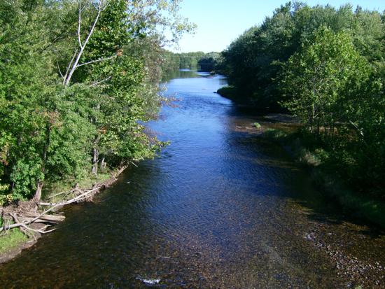 wf_river