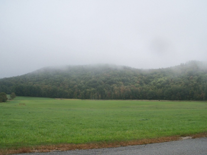 bucklandfog