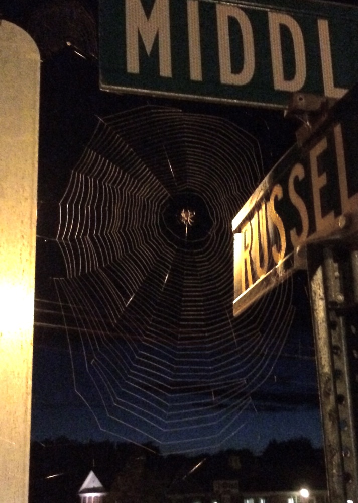 hadleyctrweb