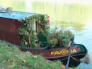 houseboatplants