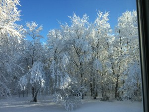 tg-snow5