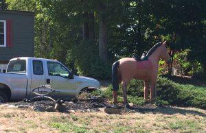 wilb-horse