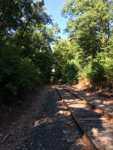Railroad tracks stretching into the distance toward the left, with trees on either side.