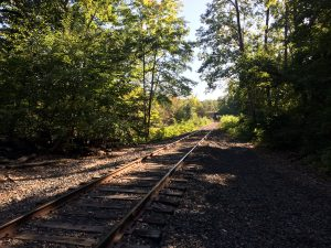 Railroad tracks stretching into the distance toward the right, with trees on either side.