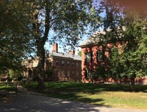 Brick buildings with trees and grass in front of them.