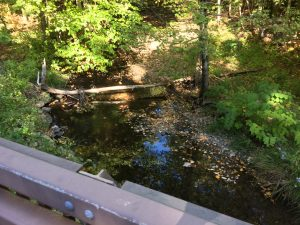 Gentle flowing brook, seen from a bridge over it.  A bit of bridge railing is seen at the bottom edge of the photo, and there are small trees and undergrowth on the banks of the brook.  A narrow trunk of a dead tree lies across the water.
