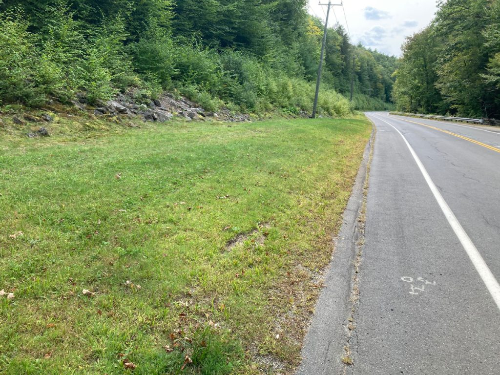 Grassy area on left, with road surface on right.