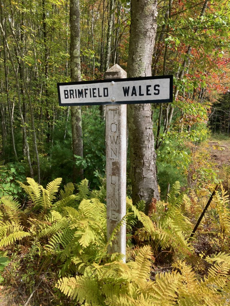 "Concrete post reading ""Town Line"" with painted sign attached that reads ""Brimfield"" on the left side and ""Wales"" on the right.  There are ferns and such around the base of the post, and trees behind."