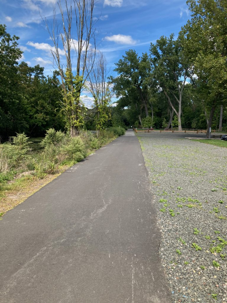 Paved tral heading into distance, with trees around it