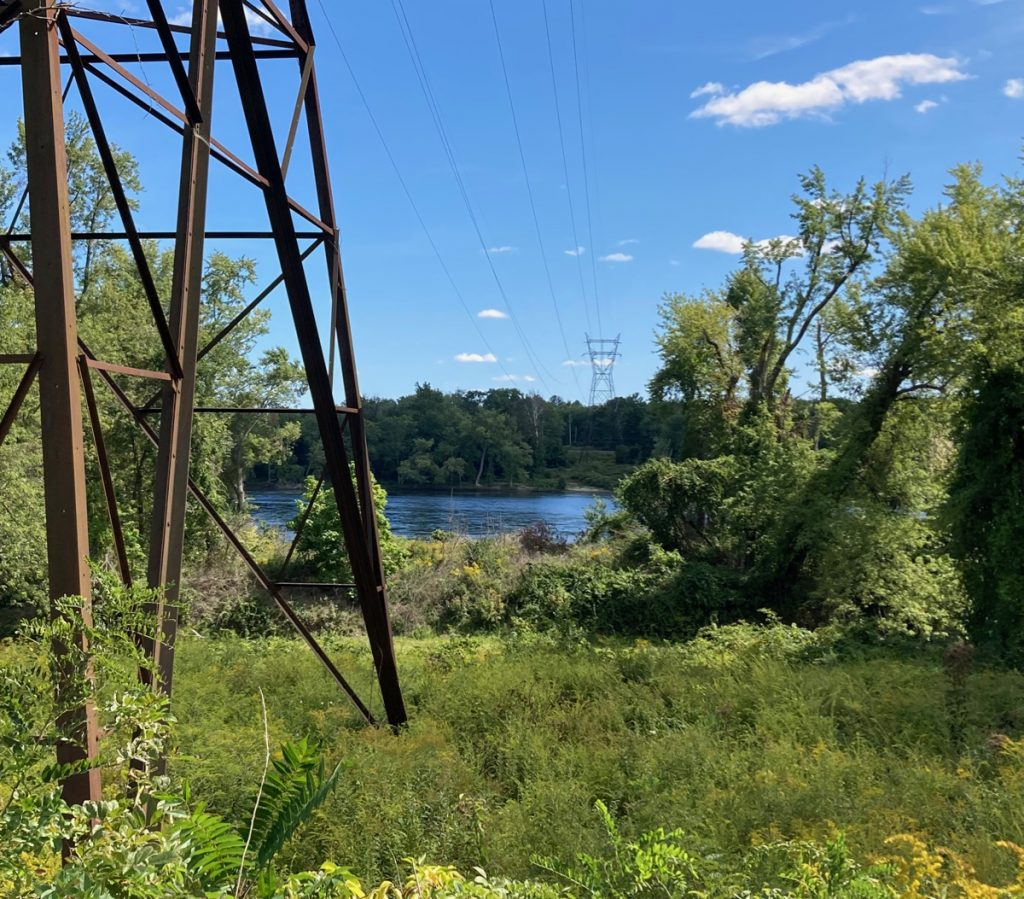 Area of grass and brush, with the base of an electrical tower on the left side, and in the distance several trees and a bit of water.