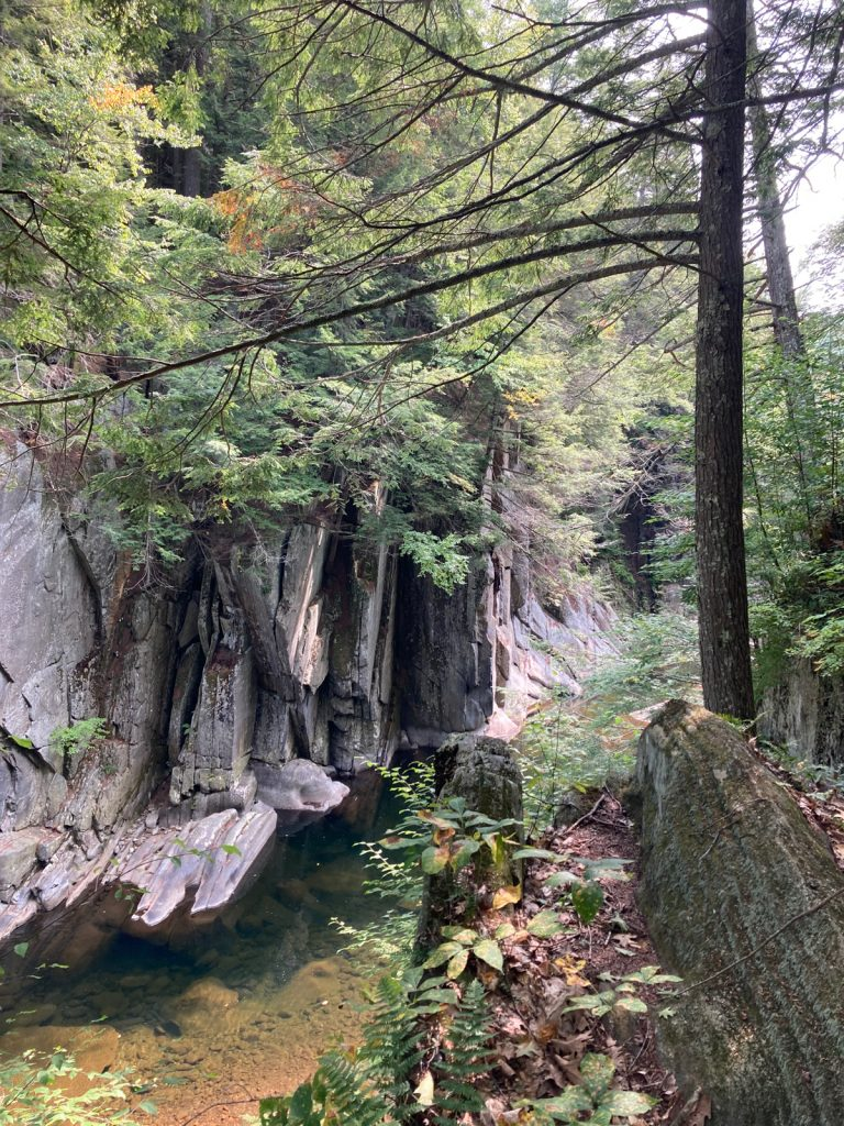 Water flowing at bottom of rocky gorge, with trees above gorge walls.