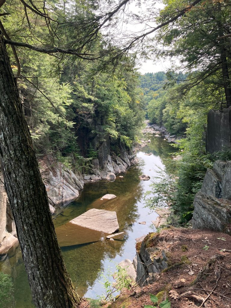 Looking downriver in gorge, with trees above gorge walls on either side.
