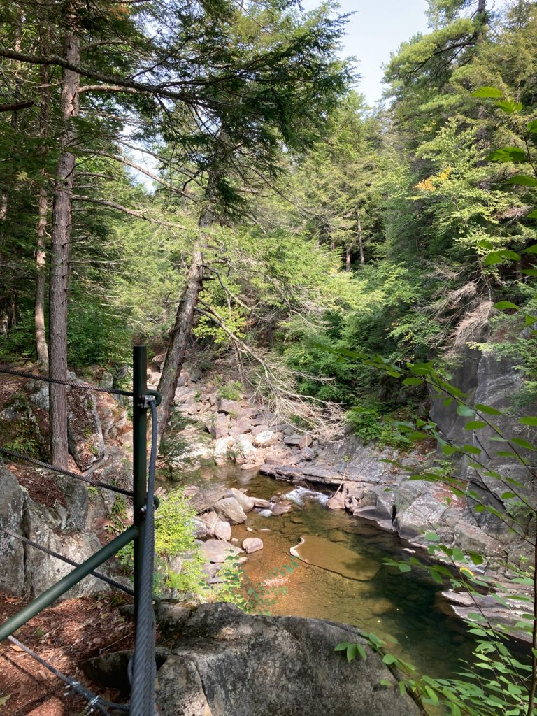 Looking slightly upriver in rocky gorge, with trees above gorge walls, and a bit of railing visible in the foreground.