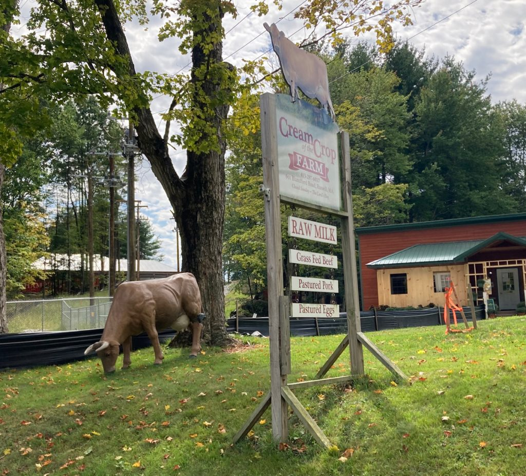 "A cow statue on a lawn, next to a sign for ""Cream of the Crop Farm"".  Smaller signs below the main one advertise Raw milk, grass-fed beef, and other products.  A farm building is in the background."