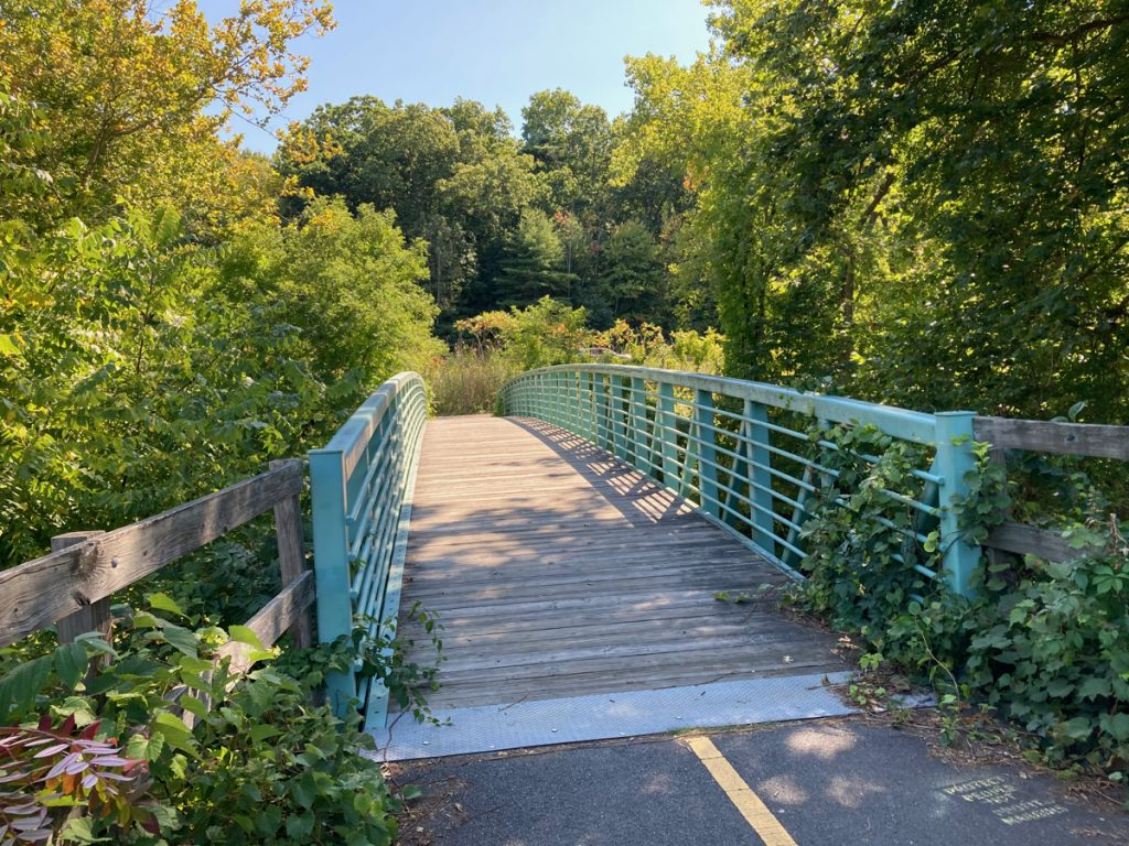Trail bridge with wooden deck and greenish metal railings, with trees all around.