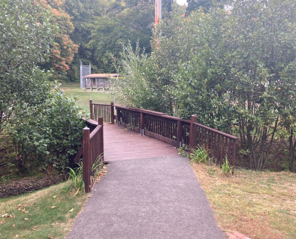Reddish-brown painted wooden bridge, with asphalt path leading to it, and small trees and bushes on either side.