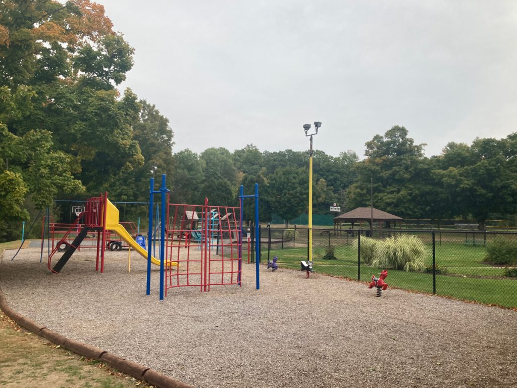 A playground with red and blue monkey bars, a red and yellow slide, and some swings beyond those, plus a few animals on springs.  Trees are in the background, along with a small picnic shelter.