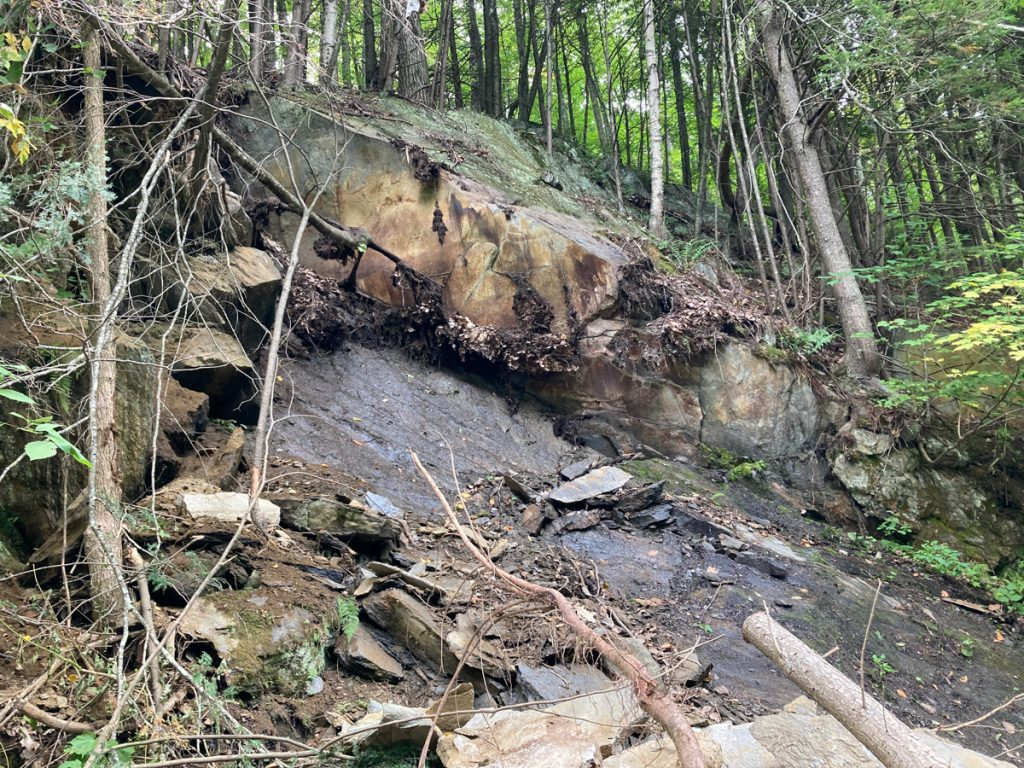 A wall of rocks with muddy spot where several rocks a.  Trees above the rocks.