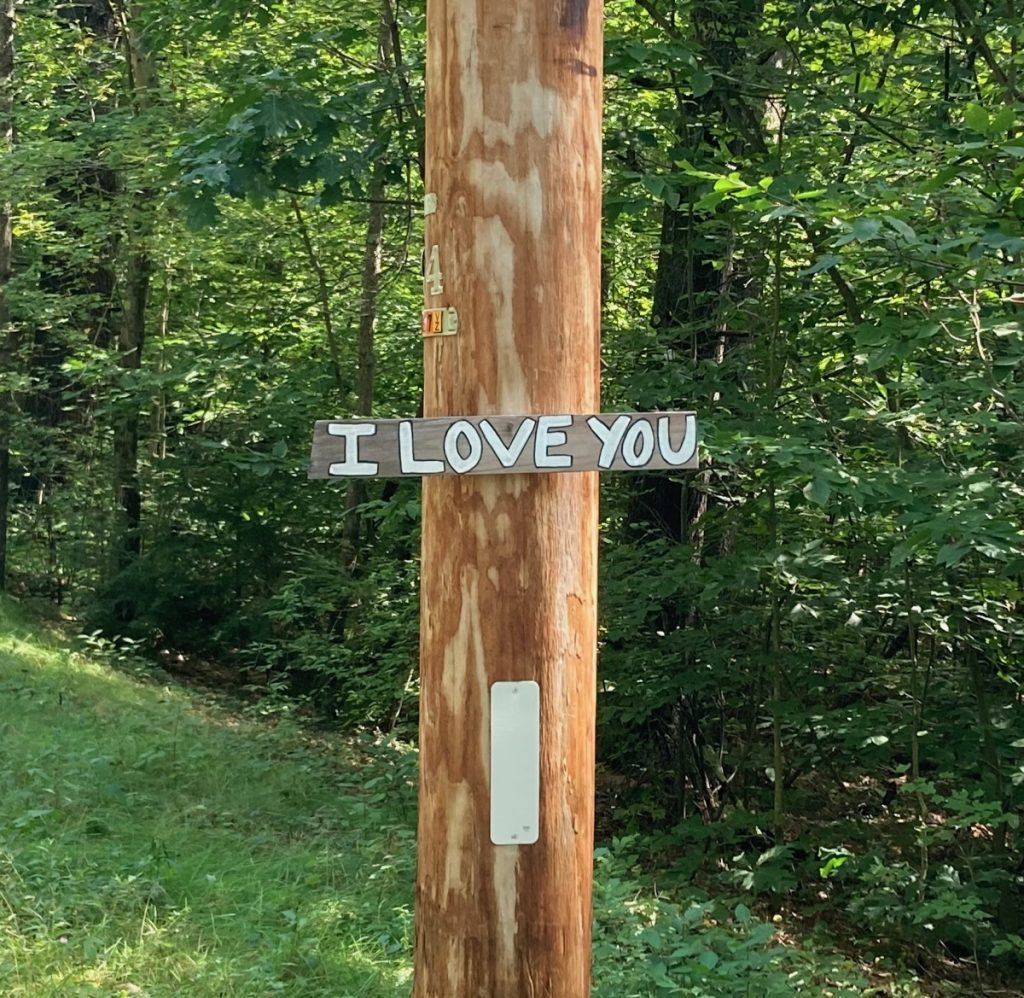 "Wooden sign mounted on a telephone pole, with the words ""I Love You"" painted on the sign in white.  Trees behind pole."