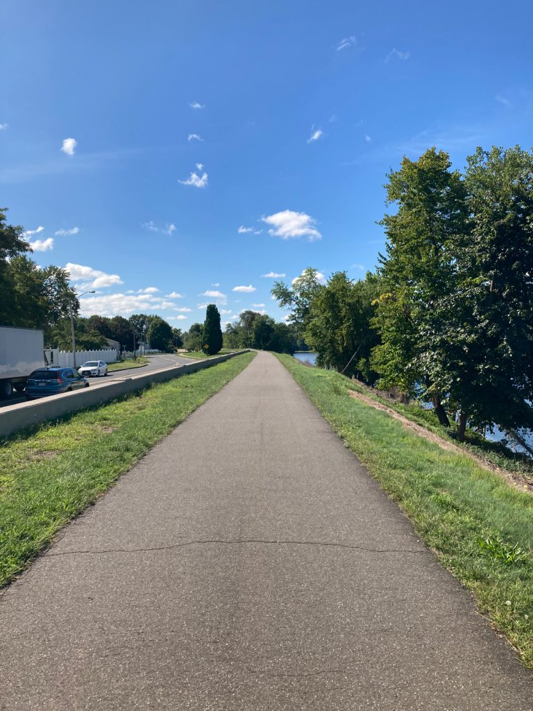 Paved trail running off into distance, with grass on either side, trees on right, and some houses and cars on a street to the left