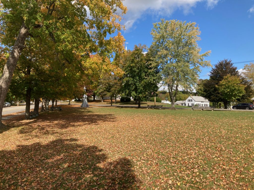 Large grassy town common with many fallen leaves.  There are trees on the left side and at the far end.