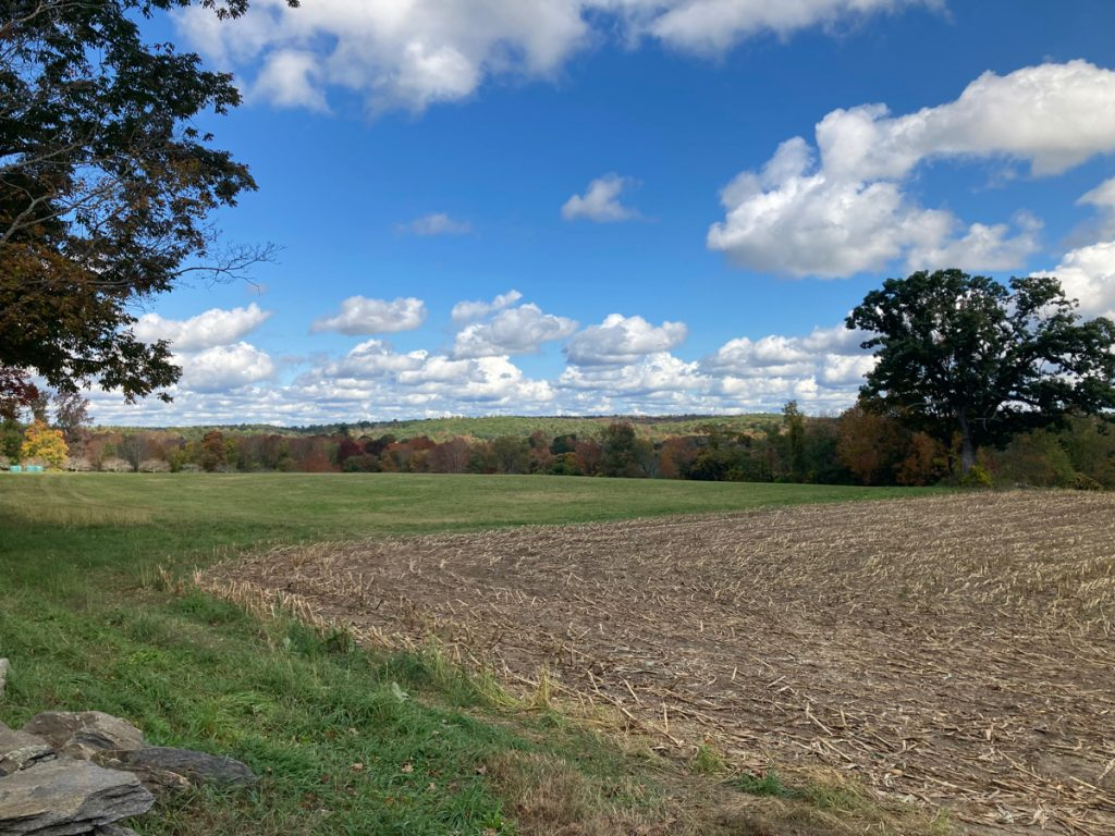 Corner of a field that corn was harvested from, with grass to the left and past the field, then trees in the far distance and a low hill beyond that.
