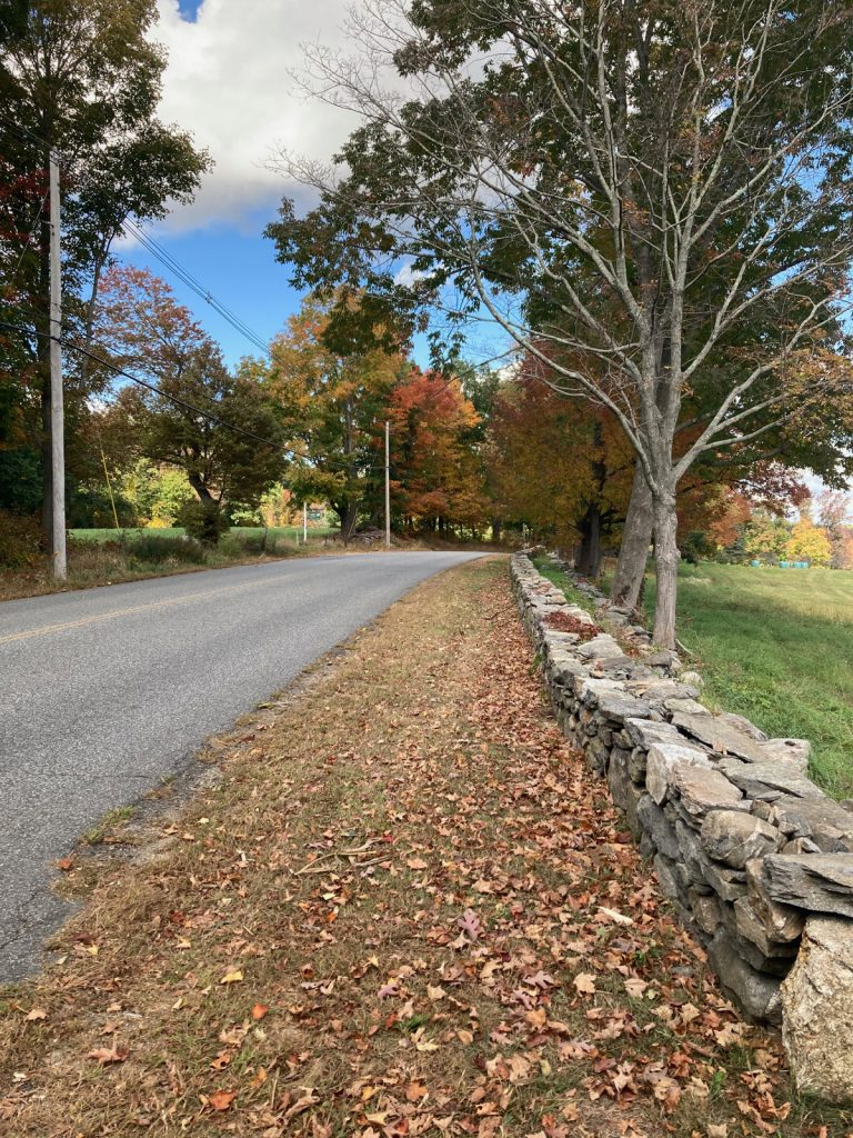 Road surface on left, with a stone wall on the right, and leaf-covered grass between them.  Trees are on both sides of the road farther on.